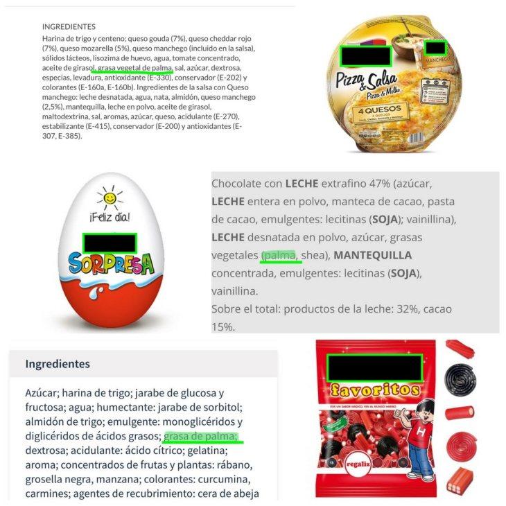 ingredientes_palma_3