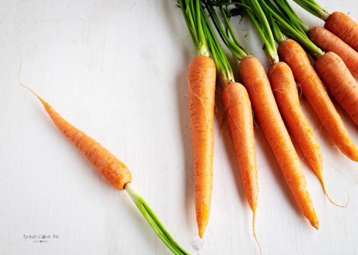 zanahorias_blog_1